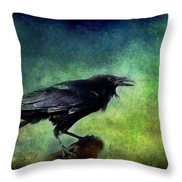 Common Raven Throw Pillow by Barbara Manis