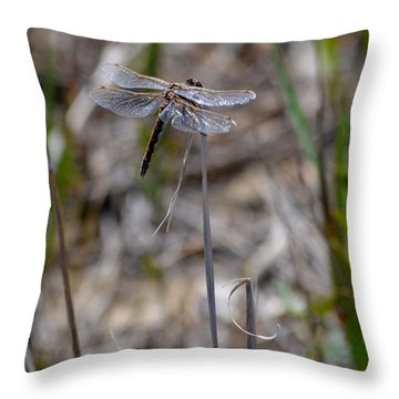 Commonone Throw Pillow