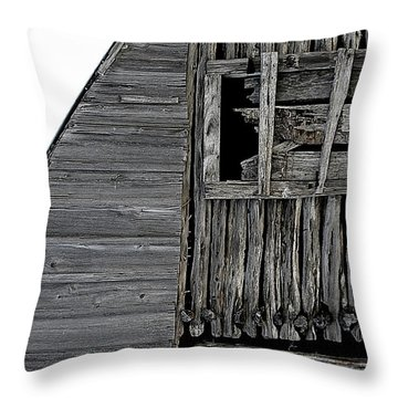 Commons Ford Barn Throw Pillow
