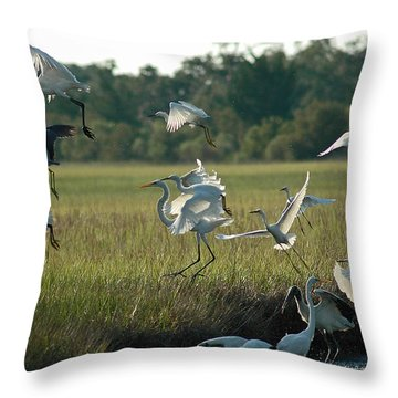 Community Uplift Throw Pillow by Bruce Gourley