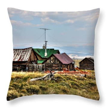Throw Pillow featuring the photograph Como I by Lanita Williams