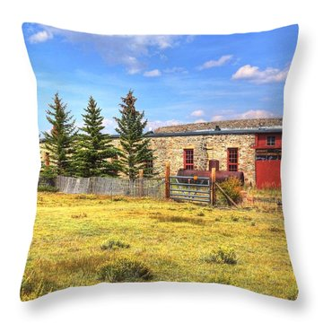 Throw Pillow featuring the photograph Como Roundhouse by Lanita Williams