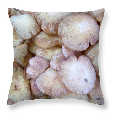 Compatability Throw Pillow