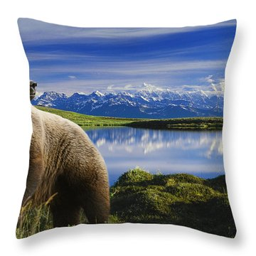 Composite Grizzly Stands In Front Of Throw Pillow by Michael Jones