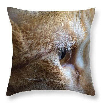 Concentration Throw Pillow by Tikvah's Hope
