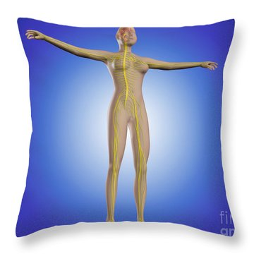 Conceptual Image Of Female Nervous Throw Pillow by Stocktrek Images