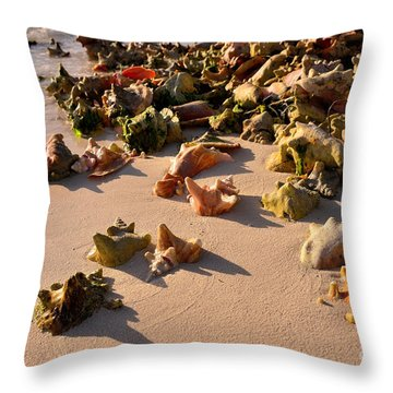 Conch Collection Throw Pillow by Jola Martysz