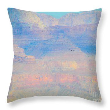 Condor Series B Throw Pillow by Cheryl McClure
