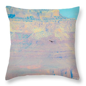 Condor Series D Throw Pillow by Cheryl McClure