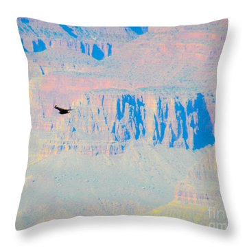 Condor Series G Throw Pillow by Cheryl McClure