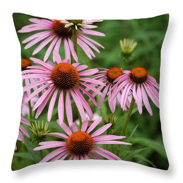 Throw Pillow featuring the photograph Cone Flowers by Donald Williams