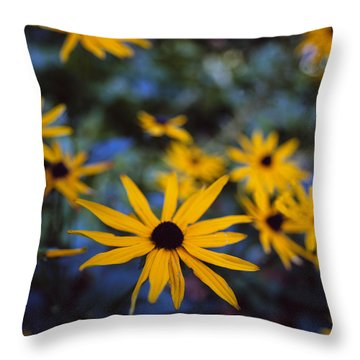 Cone Flowers Throw Pillow by Marcio Faustino