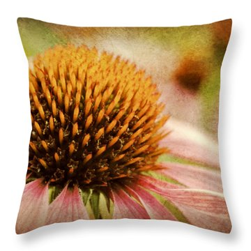Coneflower Throw Pillow by Kelly Nowak