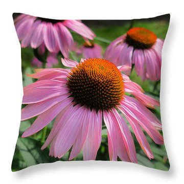 Conehead Daisy Throw Pillow by Arlene Carmel