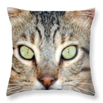 Confession Throw Pillow