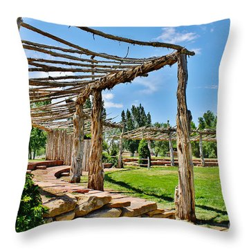 Confluence Park Delta Colorado Throw Pillow by Janice Rae Pariza