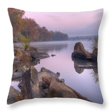 Congaree River At Dawn-1 Throw Pillow