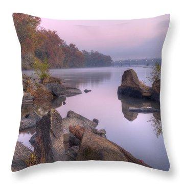 Congaree River At Dawn-1 Throw Pillow