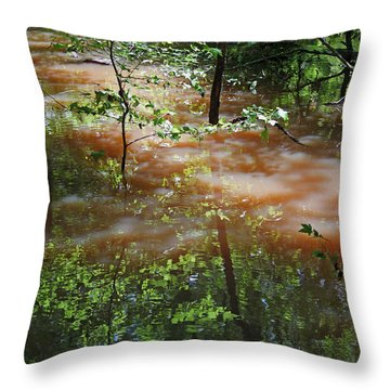 Congaree Swamp In Flood Conditions Throw Pillow by Suzanne Gaff