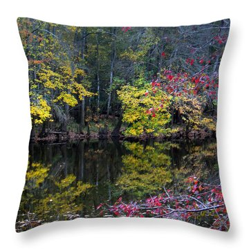 Congaree Swamp Throw Pillow by Skip Willits