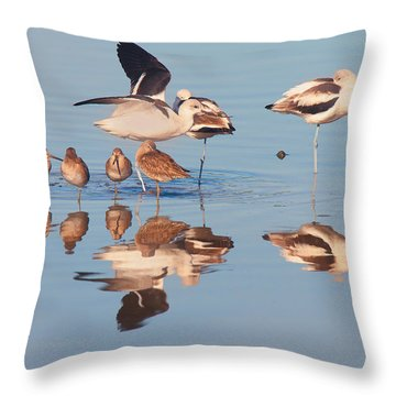 Congregation Throw Pillow
