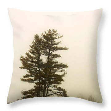 Coniferous Tree In Winter Throw Pillow