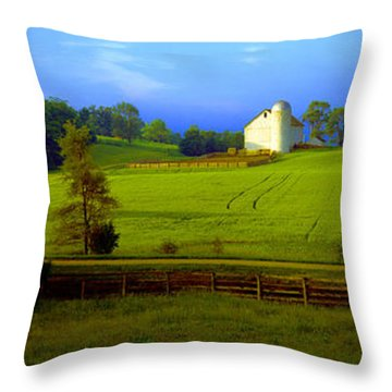 Conley Road Farm Spring Time Throw Pillow