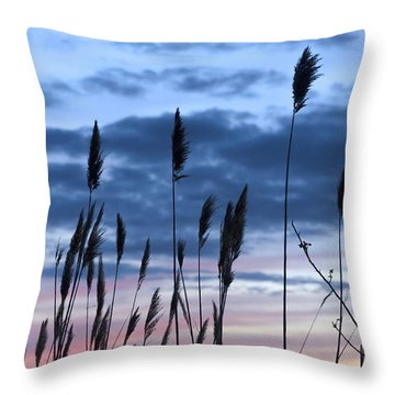 Connecticut Sunset With Reeds Series 4 Throw Pillow