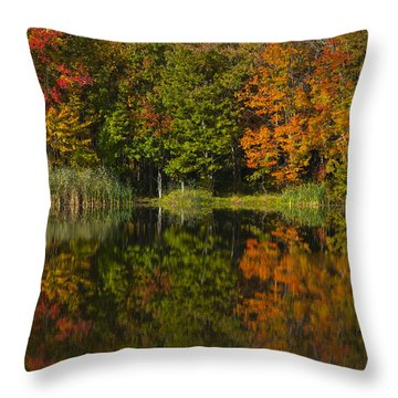 Connecticuts Colors Throw Pillow by Karol Livote