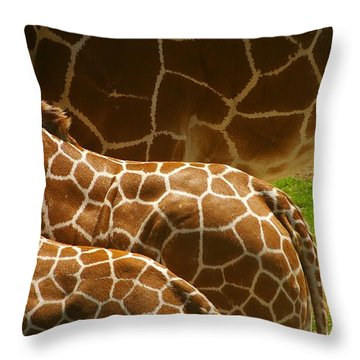 Throw Pillow featuring the photograph Connection by Randy Pollard