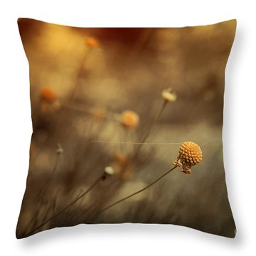 Connections Throw Pillow by Trish Mistric