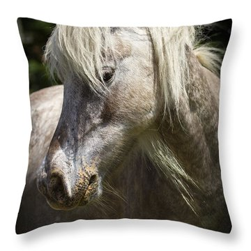 Consideration Throw Pillow by Carrie Cranwill