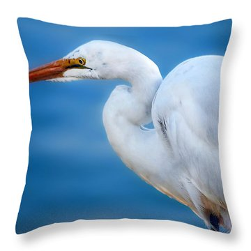 Contemplating Flight Throw Pillow by Camille Lopez