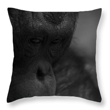 Contemplating Orangutan Throw Pillow
