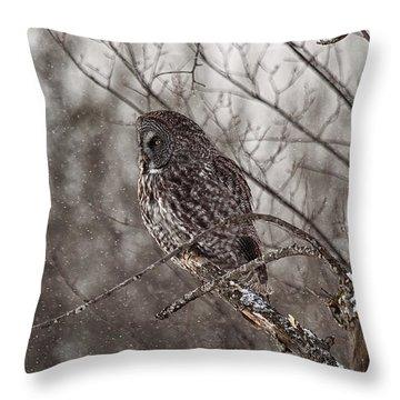 Contemplating Winter Throw Pillow