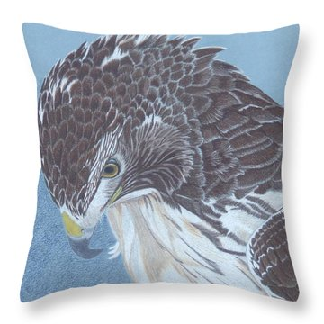 Contemplation Throw Pillow by Anita Putman
