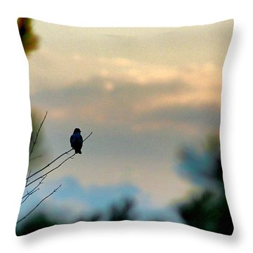 Throw Pillow featuring the photograph Contemplation by Bruce Patrick Smith