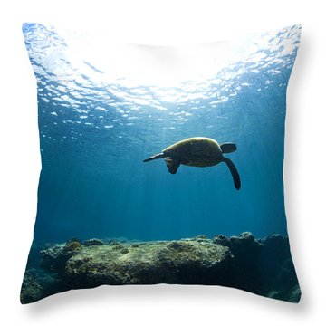 Contempltion Throw Pillow by Sean Davey