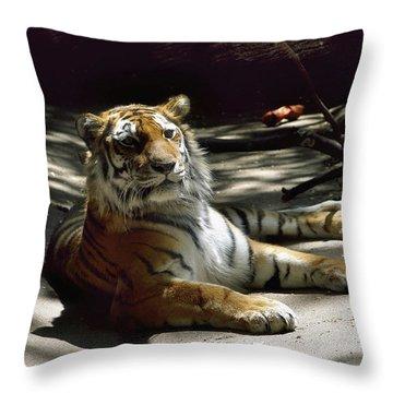 Content Tiger Throw Pillow