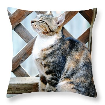 Contented Throw Pillow
