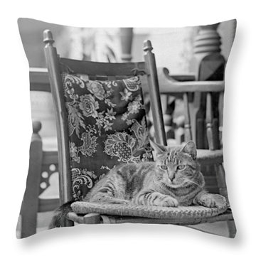 Contented Cat Throw Pillow