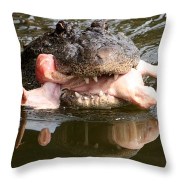 Throw Pillow featuring the photograph Contented by David Nicholls