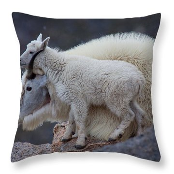 Contentment  Throw Pillow by Jim Garrison