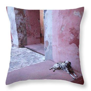 Convent Dog Throw Pillow