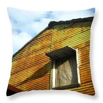 Conventillo Throw Pillow by Silvia Bruno