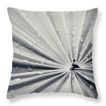 Convergence Throw Pillow by Adam Romanowicz