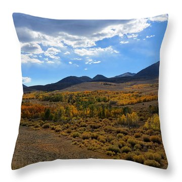 Conway Summit 2 Throw Pillow