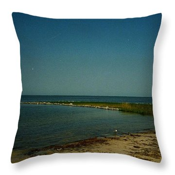 Cool Day For A Swim Throw Pillow by Amazing Photographs AKA Christian Wilson