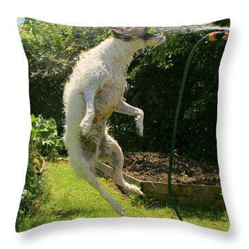 Throw Pillow featuring the digital art Cool Dog by Ron Harpham