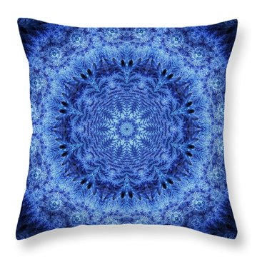 Throw Pillow featuring the digital art Cool Down Series #2 Frozen by Lilia D